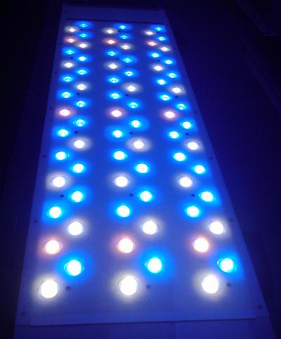 lumirium eclairage led pour aquarium